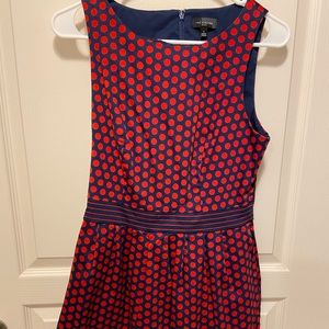 The Limited polka dot dress